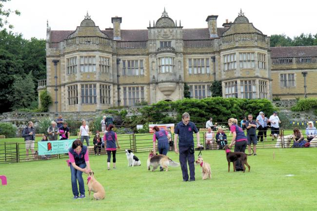 Blissgate Dog Obedience give a demonstration in the main ring with Stokesay Court in the background..