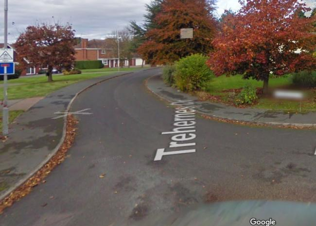 Trehernes Drive in Pedmore. Picture: Google
