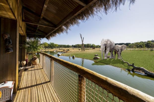 CGI images give visitors a glimpse at what the new safari lodges will look like