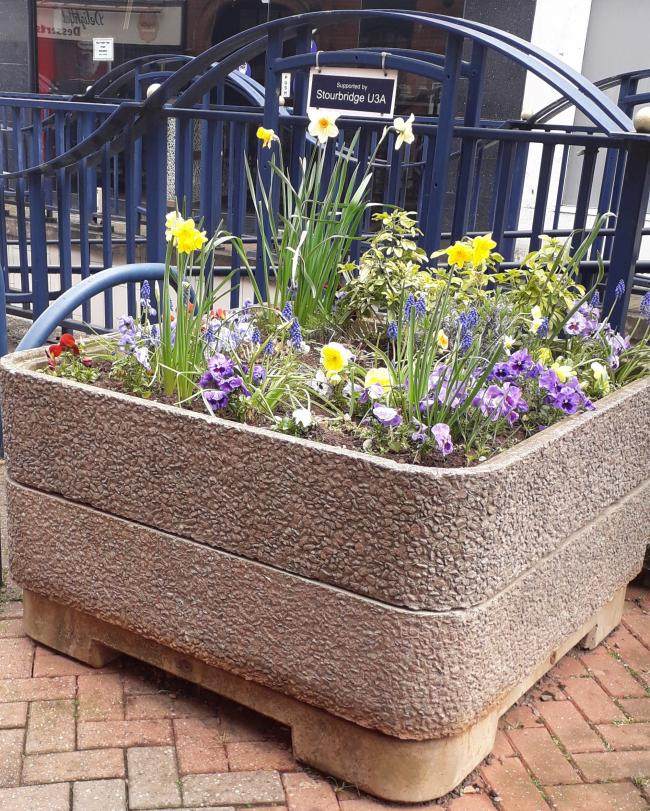 One of the planters in Foster Street tended to by Stourbridge u3a members
