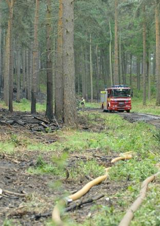 Firefighters at Million Wood near Kinver