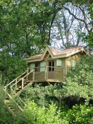 Will tree or won't tree? Avignon's love nest in a tree house