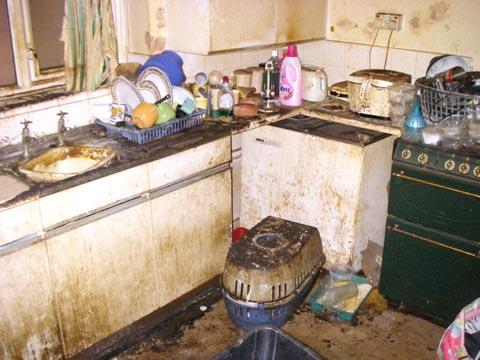The squalid conditions at the Griffin home where doomed Rocky the dog was found