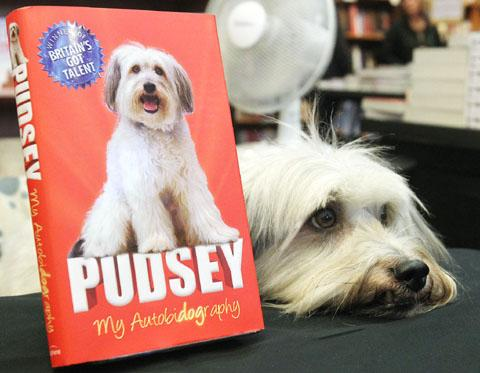 Pudesy the dog with his autobidography. Buy photo: 461212J