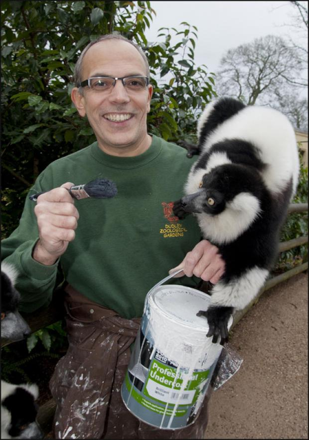 Mike Grace gets a helping hand from one of the zoo's black and white ruffed lemurs.