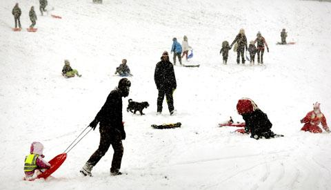 Stourbridge News: Fun in the snow in Mary Stevens Park, Stourbridge, but medics are advising people to think safety first to avoid a trip to hospital