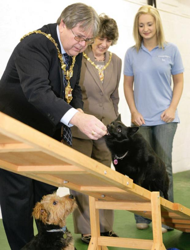 Stourbridge News: Mayor of Dudley Cllr Melvyn Mottram and Mayoress Michelle Mottram with Fina the dog and Teresa Neath at the opening of Companian pets. Buy photo: 061313AM