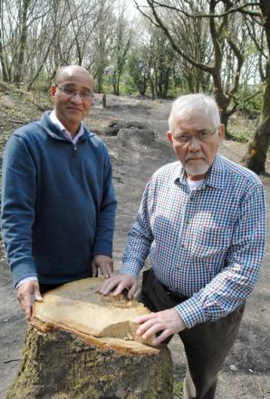 Residents' anger as teens turn Quarry Bank coppice into BMX track
