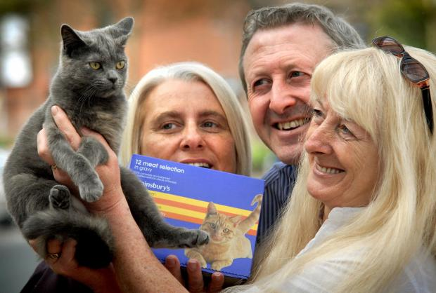 Stourbridge News: Wellcat founder Pauline Beasley (right) with Precious, Val Morgan (customer service manager) and Kevin Healy (store manager). Buy this photo: 151433L.