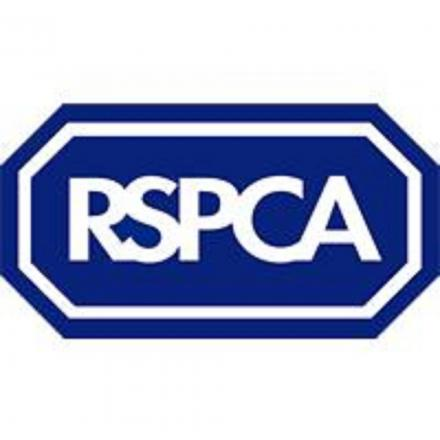 RSPCA on the search for young Animal Champions in the Black Country