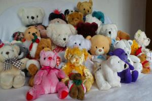 Dozens of teddies up for grabs at Wollaston Christmas fair