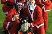 Hospice staff get set for Santa Jog: Charlotte and Chris Schofield with Archie, Ruth Powell, Lucy Baylis, Georgina Lawerence, Sarah Meese and Cyra Poole. Buy photo: 491428L