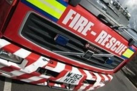 Firefighters put out blaze involving tree and undergrowth at Ismere