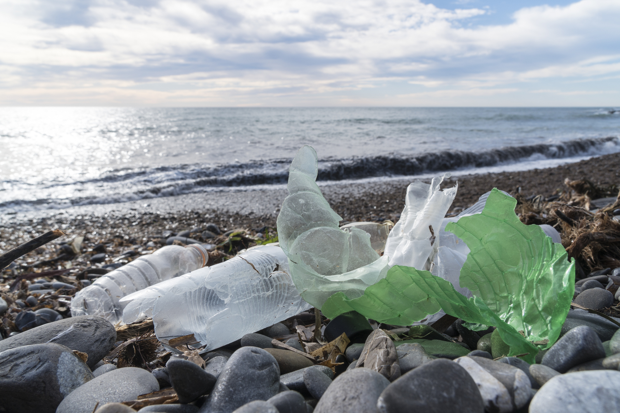 Plastics pollution is a growing problem.