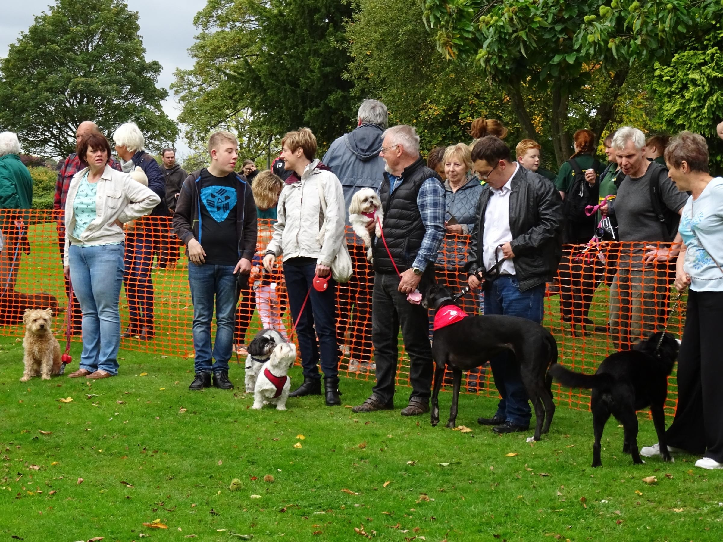 Dogs and their owners at an earlier Bark In The Park event