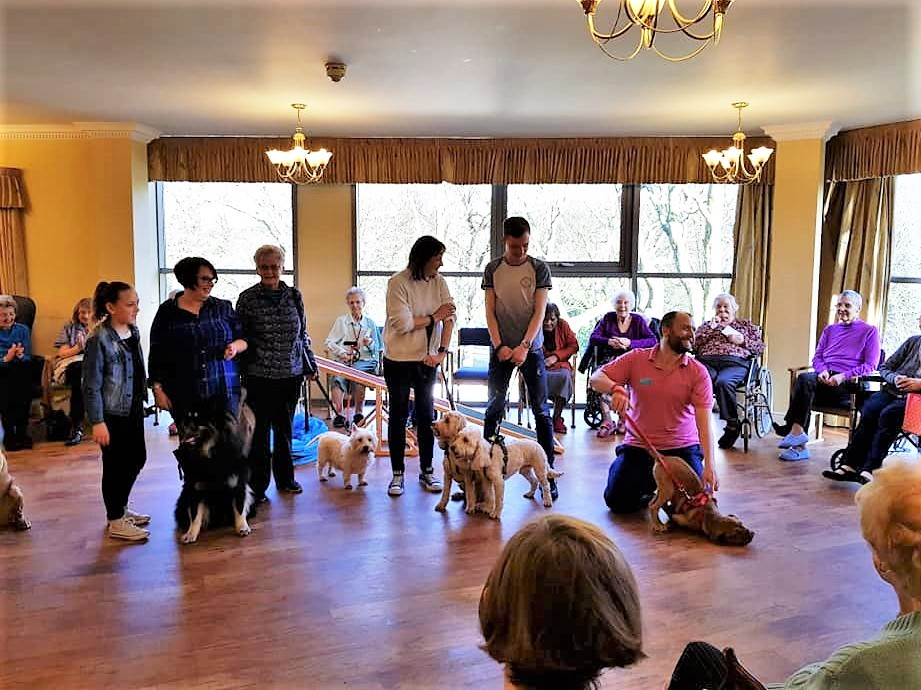 Family and team members brought along their dogs to Broadway Halls Care Home to entertain residents.